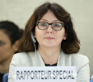 Dubravka Šimonović, UN Special Rapporteur on violence against women, presents her latest report to the Human Rights Council.