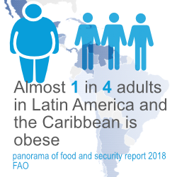 obesity facts