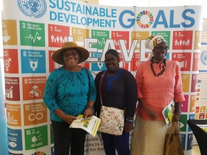 visitors to the UN SDG booth at Tobago's inaugural environment partnership forum