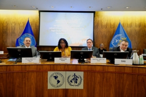 PAHO Director Carissa Etienne (centre) updates on the corona virus